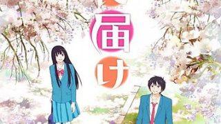 《好想告诉你》第一季+第二季 附BD 百度网盘下载